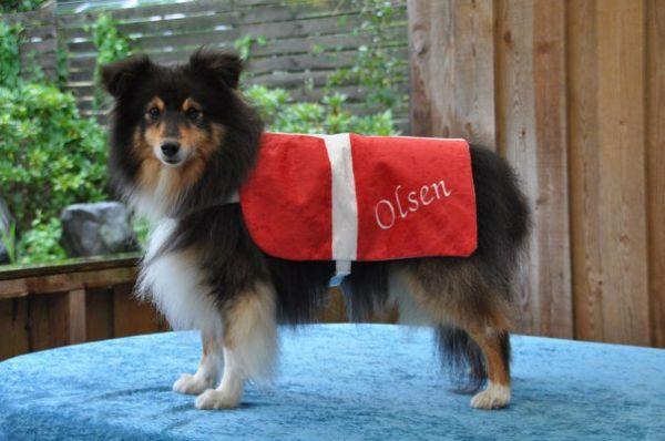 Du ser billeder fra kataloget: Billeder af Olsen